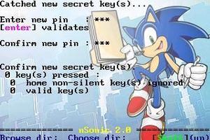 Sonic, héro de jeu vidéo, est synonyme de vitesse et discrétion.