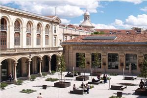 Le lycée Alphonse Daudet
