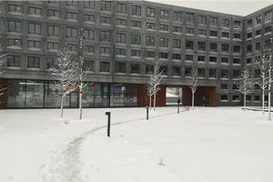 CentraleSupélec, à Gif-sur-Yvette (91), sous la neige.