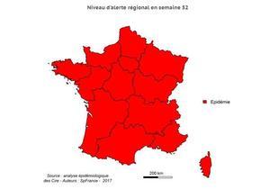 Au niveau des départements d'outre-mer, l'épidémie de grippe touche la Martinique, la Guyane et la Guadeloupe.