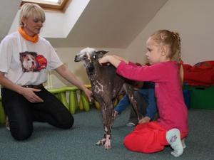 Une séance d'orthophonie avec le chien Agata
