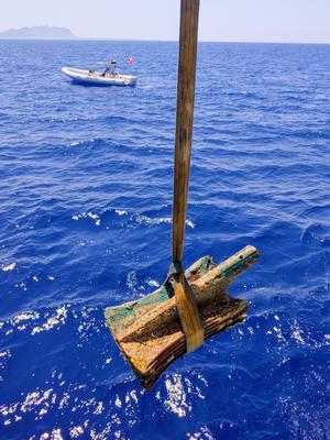 Des béliers repêchés au large des îles Égates.