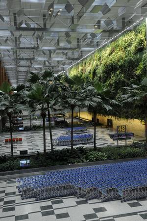 Un rêve de nature devenu réalité, avec sa forêt de bambous et ses terminaux à la végétation apaisante.