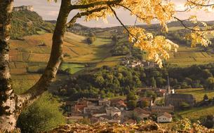 Balade automnale en Bourgogne au pays de Lamartine