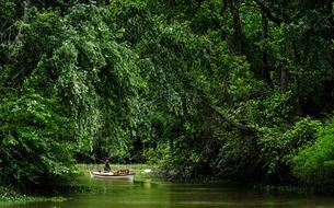 Delta du Paraná: l'Argentine au fil de l'eau