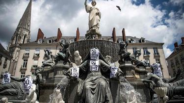 Nantes : un mois après la disparition de Steve, enquêtes et zones d'ombre