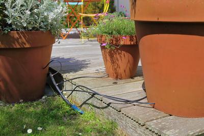 L'arrosage au goutte-à-goutte convient particulièrement aux plantes aux pots.