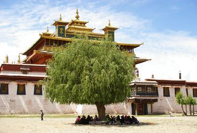 Les monastères s'égrènent au coeur de paysages somptueux du Tibet.
