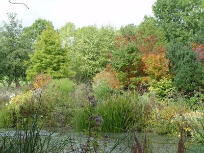 Le parc arboré de Gélaucourt, petit village lorrain de 70 habitants a été classé «Jardin remarquable».