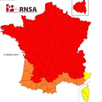 Sur cette carte, le risque allergique va de moyen (jaune) à très élevé (rouge)