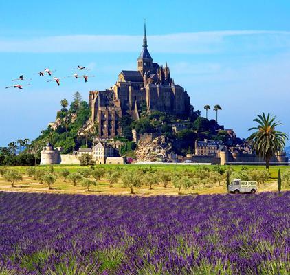 Le Mont-Saint-Michel sera-t-il entouré d'oliviers en 2050?