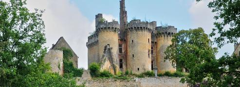 À vendre, magnifique château dans le Périgord pour 50 euros