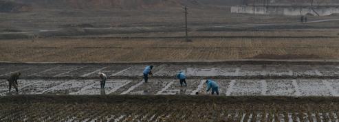 Les sanctions aggravent l'épidémie de tuberculose en Corée du Nord