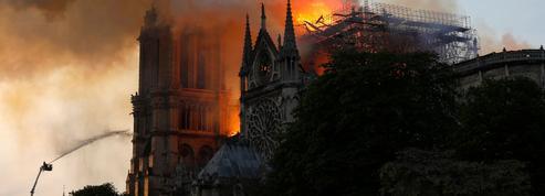 Didier Rykner: «Ce désastre aurait pu être évité»