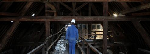 Notre-Dame: les acteurs de la forêt française prêts à reconstruire la charpente