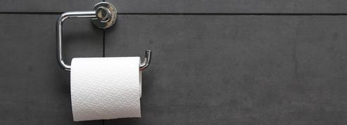 Bretagne: des toilettes sèches dans une résidence, une première