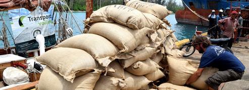 Le transport de marchandises à la voile, une solution écologique efficace
