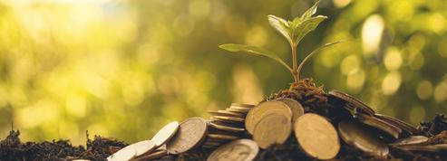 Comment faire pour concilier placements et écologie?