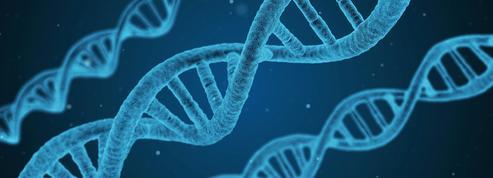 États-Unis: le procès d'un crime résolu par la généalogie génétique s'ouvre, une première