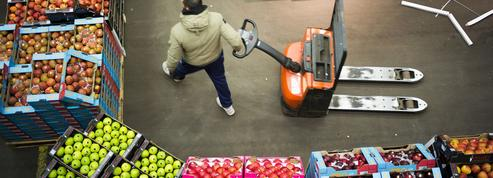 Gaspillage alimentaire: comment le marché de Rungis tente de diminuer le gâchis