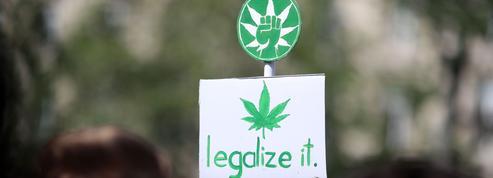 Faut-il légaliser le cannabis pour réduire la délinquance?