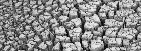 Été 1976: une sécheresse inédite crée un nouvel impôt