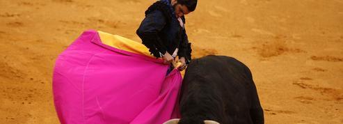 Fêtes de Bayonne: l'économie écornée de la corrida