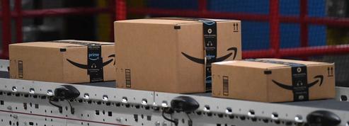 Il escroque Amazon à hauteur de 330.000 euros en renvoyant ses colis remplis de terre