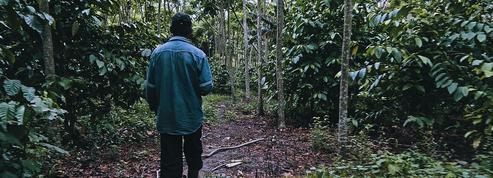 En Bolivie, l'astucieuse gestion de la forêt pour préserver l'eau