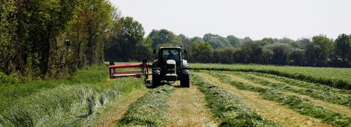 «Accusé agriculteur, présentez-vous à la barre!»