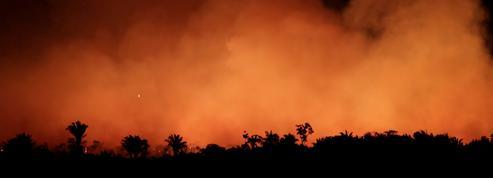 Amazonie:«Les mégafeux montrent notre rapport complètement détraqué à la nature»