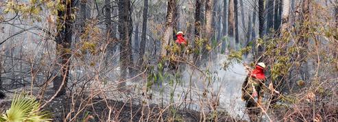 La Bolivie aussi peine à contenir ses incendies