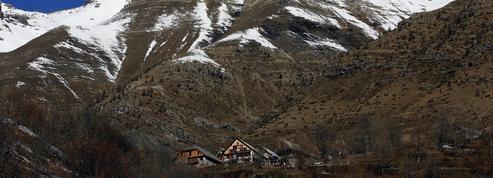 Les bergers des Hautes-Alpes n'en peuvent plus du loup