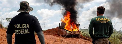 Amazonie: reportage au cœur de la forêt dévastée