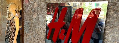 H&M se prive de cuir brésilien pour préserver la forêt amazonienne