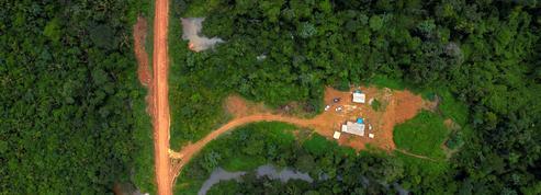 Amazonie: Arado, poste avancé de la tribu indienne des Araras contre les «envahisseurs»