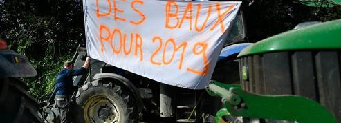 Tension à Notre-Dame-des-Landes pour les terres agricoles