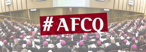 Au fait, c'est quoi un synode?
