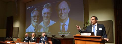 Nobel de médecine 2019: comment les cellules s'adaptent au manque d'oxygène