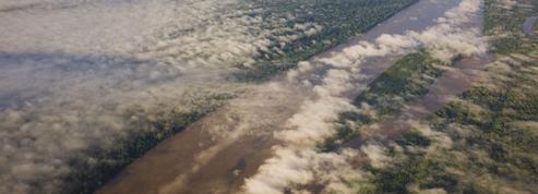 Au-dessus de l'Amazonie, flottent des «rivières volantes»