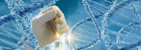 Embryons chimériques, mythes et réalités