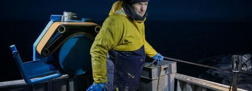 Éric Jacquier, le pêcheur star qui sublime l'assiette des grands chefs