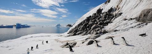 La France plaide pour une réserve marine en Antarctique