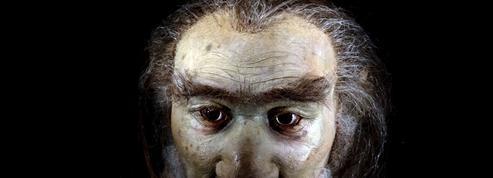 «Homo sapiens» est-il en fait apparu en Afrique du Sud?