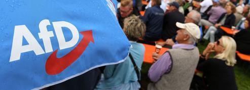 Allemagne: l'AfD se divise entre radicaux et pragmatiques