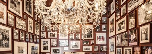 Mori Venice Bar: décor flamboyant de Starck et excellente cuisine vénitienne