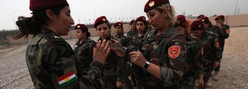 «Dernière enclave kurde de Syrie menacée par l'armée turque: la France doit agir!»