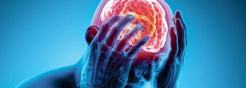La douleur psychique et la douleur physique ont des circuits cérébraux communs