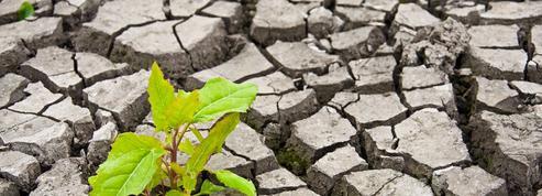 Climat: la mise en place très complexe de l'accord de Paris
