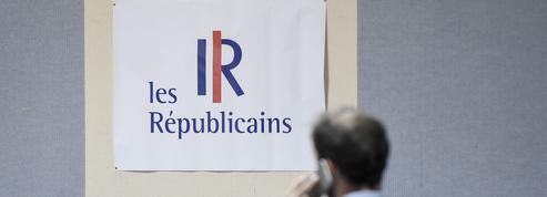 Réforme des retraites: «LR se coupe définitivement du bloc populaire»